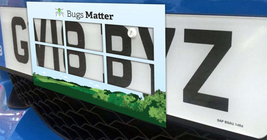 New app to track insect population by counting car number plate splats
